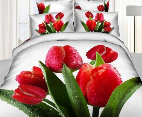 Постельное бельё Танго Сатин 1.5 спальный ts01-835-50 фото
