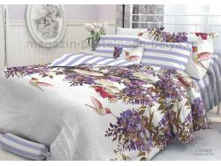 Комплект постельного белья семейный Verossa Перкаль 545-2002 Colibri фото