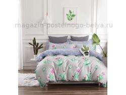 Фото Постельное бельё Танго Твил 2 спальный tpig2-558-50