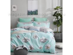 Фото Постельное бельё Танго Твил 2 спальный tpig2-764-50