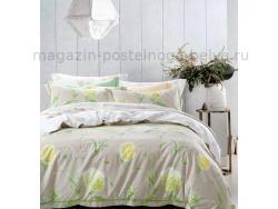 Фото Постельное бельё Танго Сатин 1.5 спальный ts01-x47