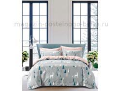 Фото Постельное бельё Танго Сатин 1.5 спальный ts01-x55