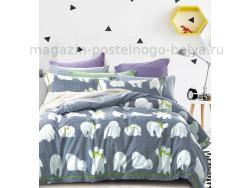 Фото Постельное бельё Танго Сатин 2 спальный ts02-x57-50