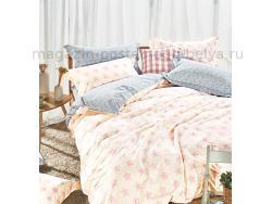 Фото Постельное бельё Танго Сатин 2 спальный ts02-x63-70