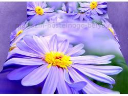 Фото Постельное бельё Танго Сатин евро ts04-fs629