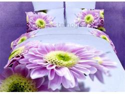 Постельное бельё Танго Сатин 1.5 спальный ts01-fs619 фото