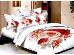 Постельное бельё Танго Сатин 2 спальный ts02-062-50 фото