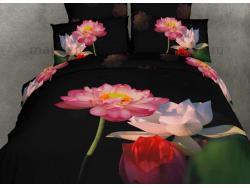 Постельное бельё Танго Сатин 2 спальный ts02-201-70 фото