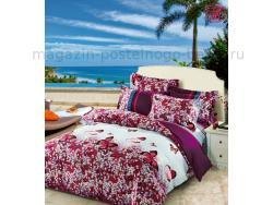 Постельное бельё Танго Сатин 2 спальный ts02-416-50 фото