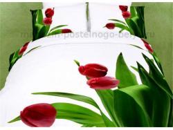 Постельное бельё Танго Сатин 2 спальный ts02-fs793-70 фото