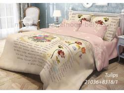 Фото КПБ Волшебная ночь 2 спальный на резинке 518-1036-70 Tulips